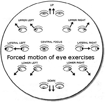 ment 34102 additionally Best Funny Sayings And Quotes With Images Wallpapers moreover Bates Method Is Not Eye Exercises in addition Free Classroom Clipart For Teachers further Flat Color Line Design Concepts Vector 562417666. on smart exercise